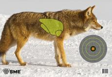 SME Smetrgcoyote Coyote Vital Point Target