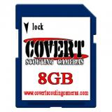 Covert SD Memory Cards