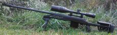 Gunsmithing/repair/customizing